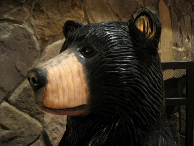 Sweet Black Bear Loves Life at Wintergreen
