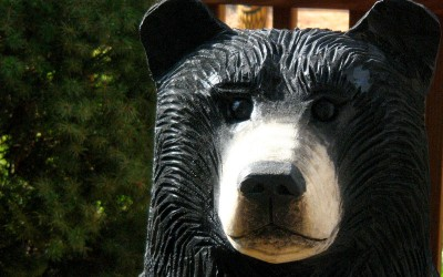 Chainsaw Bear, Lucinda, close up