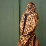 Owl, back detail, wood carving in reclaimed Hemlock