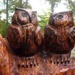 Chainsaw Owls