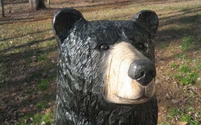 Black Bear, Harold