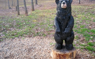 Black Bear, Puddin'