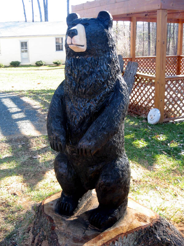 Black Bear Chainsaw Carving 14