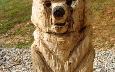 Brown Bear, Totem