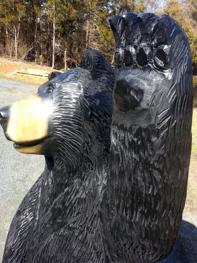 Hello! Big Black Bear
