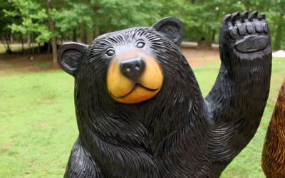 Joe, Waving Black Bear